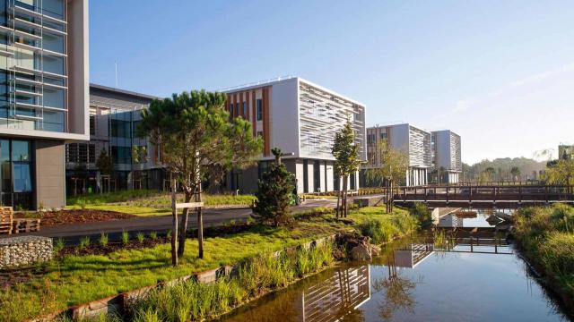 Le Campus Thales Bordeaux, l'immobilier d'entreprise XXL