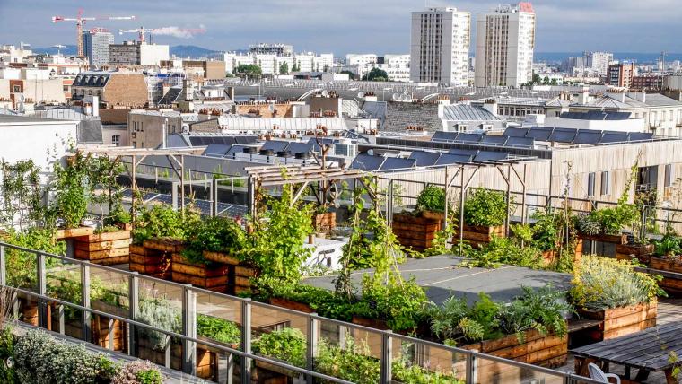 L'agriculture est l'avenir de la ville (1/2)