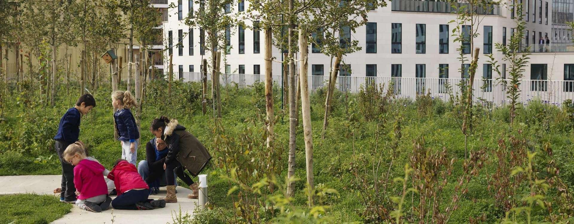 Vers des bâtiments créateurs de biodiversité ?
