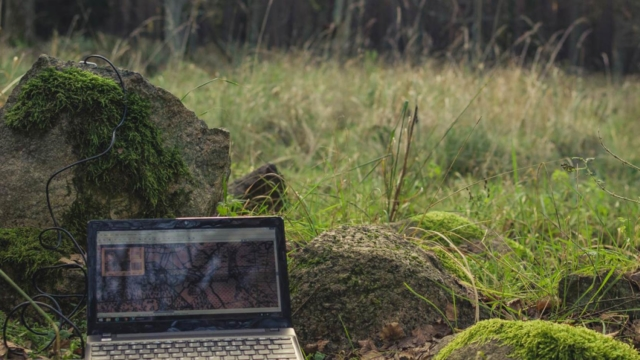 Do we work better surrounded by nature?