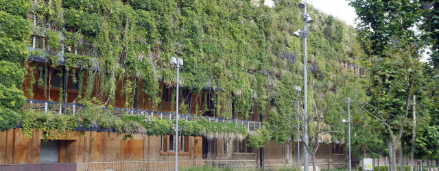 Biodiversity and building: myth or reality?